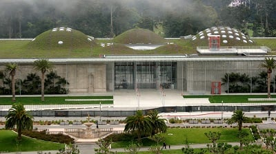 San Francisco – New Legislation Requires Green Roofs on New Construction Projects